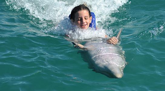 Nado con delfines en Parque Marino El Garrafón