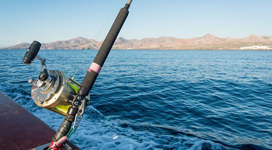 Pesca deportiva en Bahía San Carlos